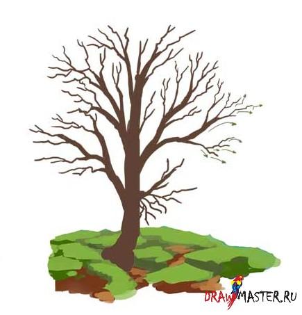Как нарисовать осенние деревья картинки