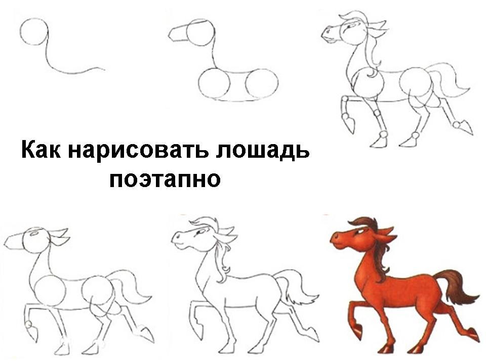 kak-narisovat-loshad-poetapno