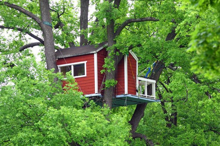 woodpecker-hotel-4