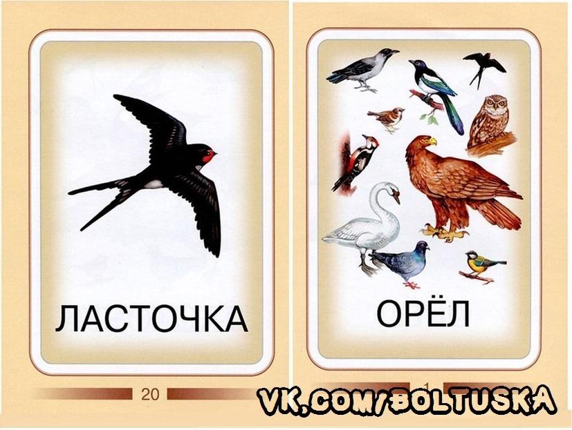 KhGuKVqYyYM_1