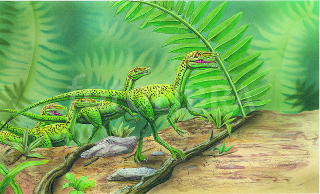 HERD OF COMPSOGNATHUS-ILLUSTRATION